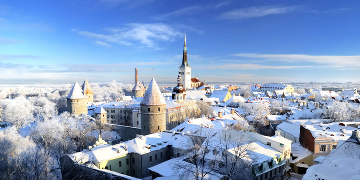 Panoramic aerial view of the old town of Tallinn, Estonia. St. Olaf's Church, fortress towers, snow-covered roofs and spires. Winter, Christmas vacations, travel destinations, sightseeing, culture