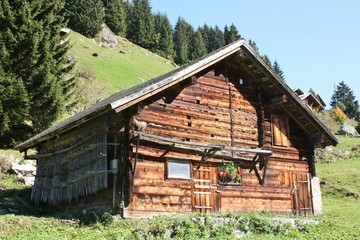 Swiss farmer's house in the Alps