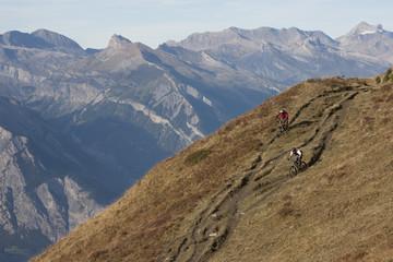mountain bike freeride 003