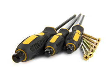 Screwdriver and screws
