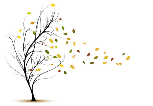 decorative vector tree silhouette in autumn