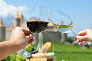 Two hands holding wineglasses,Chateau d'Aigle, Switzerland