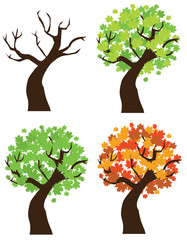 vector set of maple trees