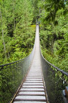 lynn canyon swing bridge