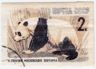 USSR shows panda Bear