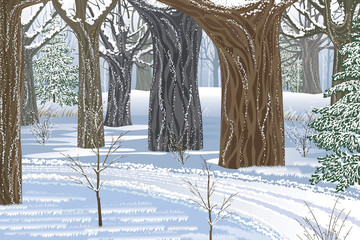 Dream winter forest