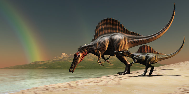 Spinosaurus Rainbow