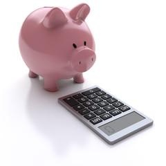 Sparschwein mit dem Taschenrechner
