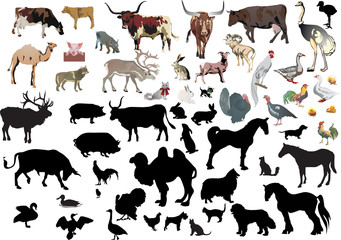 large set of farm animals