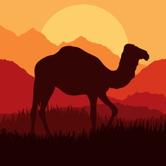 Camel in wild Africa nature landscape illustration