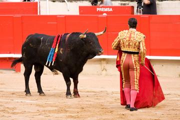Foto op Aluminium Stierenvechten Bullfight