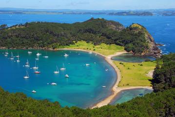 Foto op Aluminium Nieuw Zeeland Roberton Island, Aerial, Bay of Islands, New Zealand