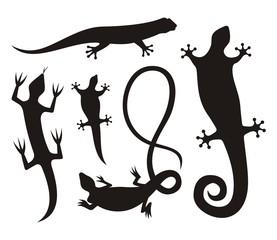 Lizard silhouettes