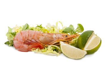 marisco fresco con limón y lechuga