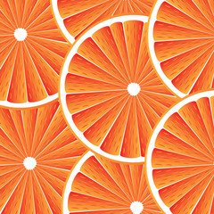 Citrus fruit background - vector