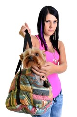 woman with dog  in bag