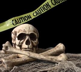 Skeleton on Black Background