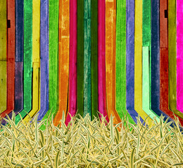 Green and Yellow Grass on Creative Wood Background
