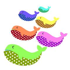 Fancy   happy  whale