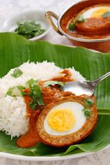 nargisi kofta curry, indian cuisine