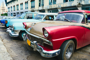 Garden Poster Cars from Cuba Havana, Cuba. Street scene with old cars.