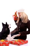 hund husky mit santa claus m tze auf dem kopf stockfotos. Black Bedroom Furniture Sets. Home Design Ideas