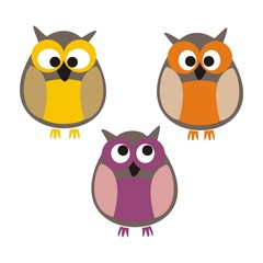Funny colorful owls vector isolated on white background