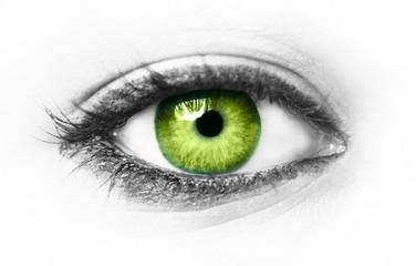 Fond de hotte en verre imprimé Iris Green eye isolated