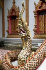 Big snakenear temple