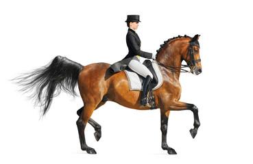 Wall Mural - Equestrian sport - dressage