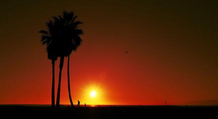sunset on Venice Beach, United States