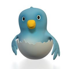 Bluebird Eggshell