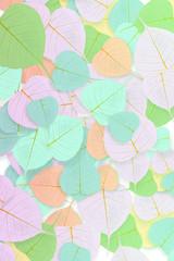 colorful leaf background