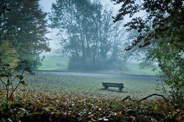 bench in mist