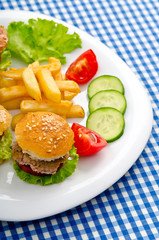 Burgers with french fries in plate