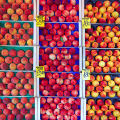 earth treasures, peaches & nectarines at the local market