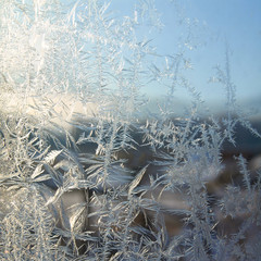 White crystals ice on winter window