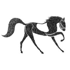 Hand drawn horse