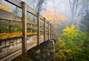 Autumn Appalachian Trail Foggy Nature Blue Ridge Fall Foliage