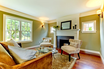 Classic green natural living room.