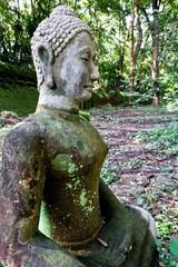 Buddha statue Wat Umong
