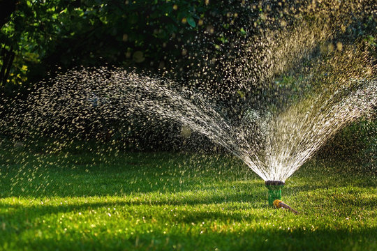 Watering garden sprinkler