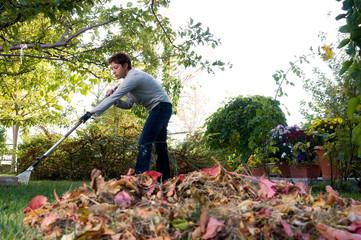 Adult woman raking autumn leafs on grass.