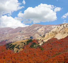 Wall Mural - Mountain landscape in autumn time