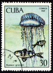 Fish Nomeus gronovii on post stamp