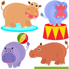 Cute Animal Vector Icons - hippopotamus (hippo)