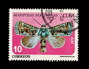 CUBA,  Mariposas Nocturnas Heterochroma,  circa 1979