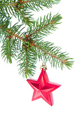 red christmas star hanging from tree