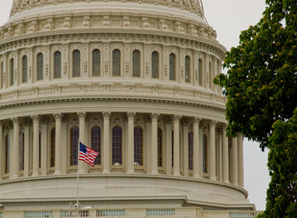 US Capitol Building in Washington DC with American Flag