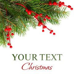 Christmas background with Xmas green fir tree